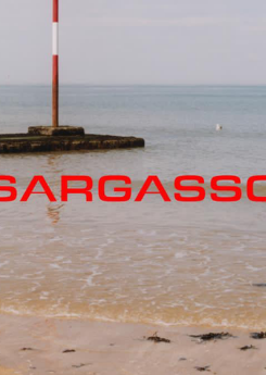 Various roles, Sargasso