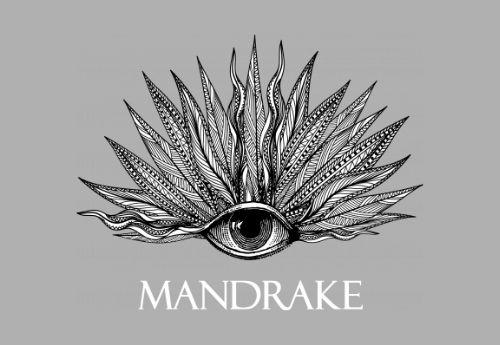 Junior Restaurant Manager, The Mandrake